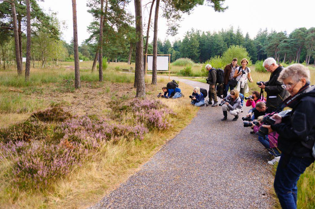 Compositie leren tijdens de Veluwse Fotodagen